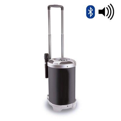 Haut-parleur Bluetooth premium avec microphone 30 W