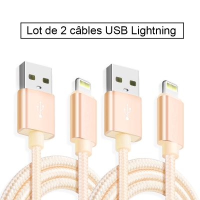 Lot de 2 câbles USB Lightning en nylon 2 m - Or