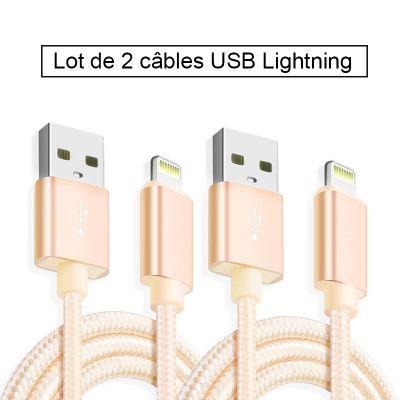 Lot de 2 câbles USB Lightning en nylon 2 m - Or