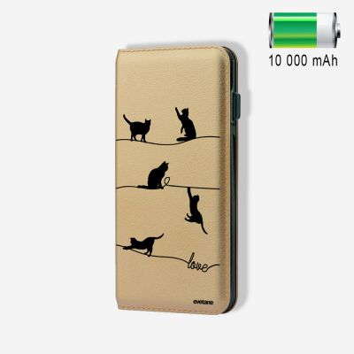 Batterie externe 10 000 mAh Chat Lignes compatible Lightning & Micro USB - Or