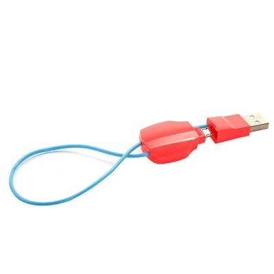 Câble USB / Lightning porte-clé bleu et rose