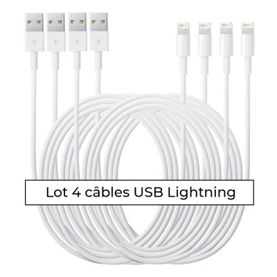 Lot 4 câbles Lightning blanc